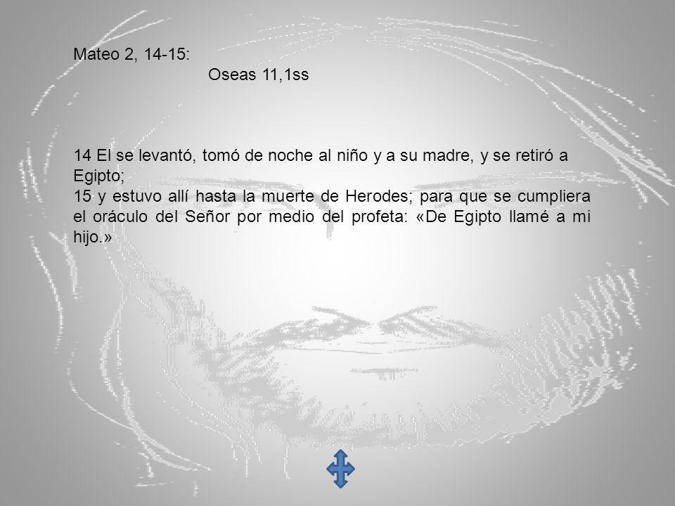 Mateo 2, 14-15: Oseas 11,1ss. 14 El se levantó, tomó de noche al niño y a su madre, y se retiró a.