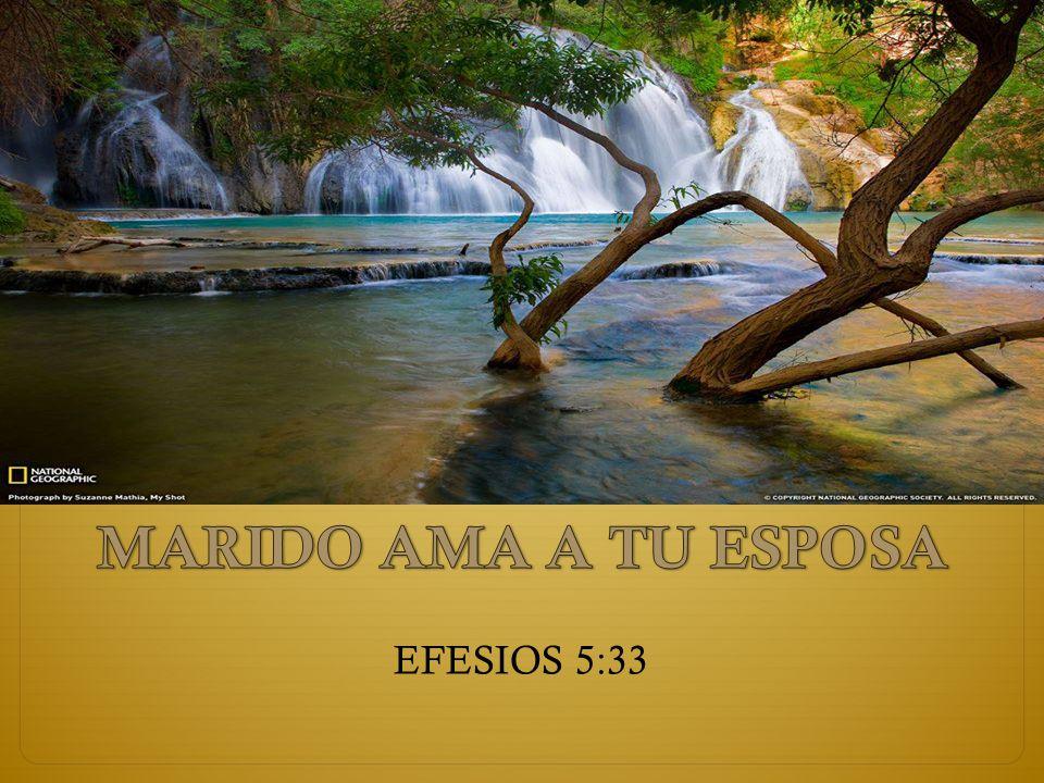 MARIDO AMA A TU ESPOSA EFESIOS 5:33