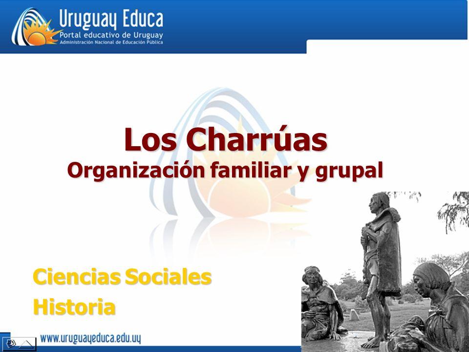 Organización familiar y grupal