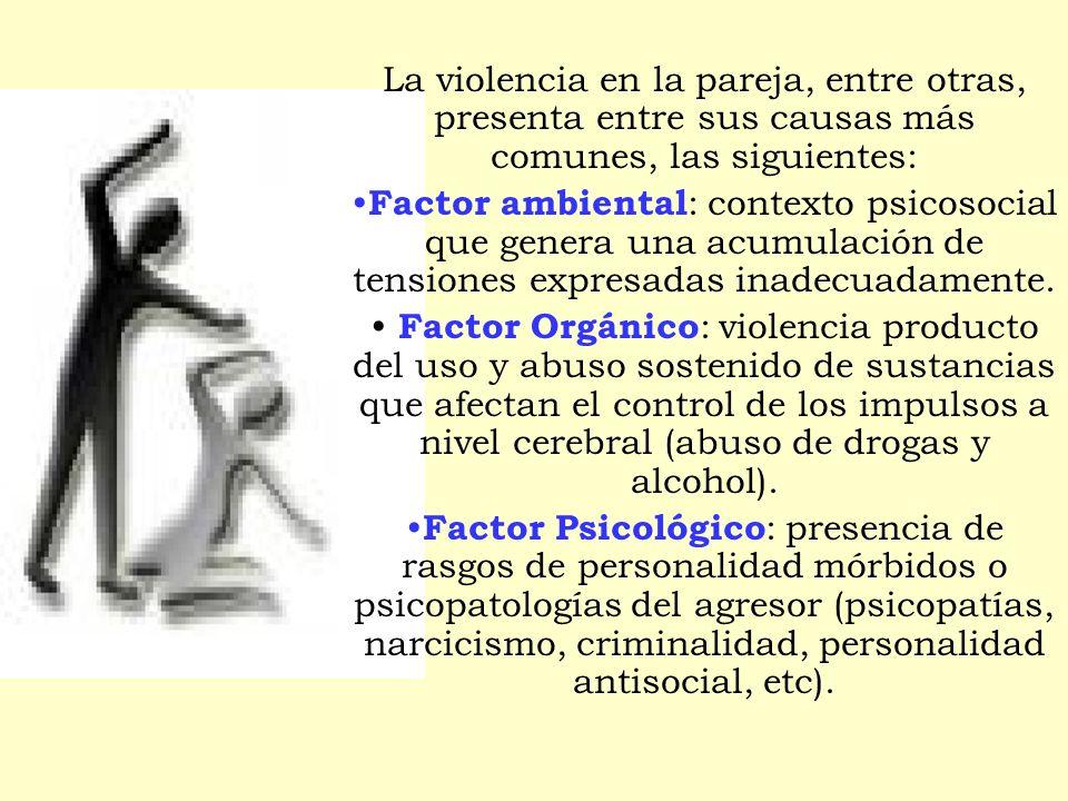 La violencia en la pareja, entre otras, presenta entre sus causas más comunes, las siguientes: