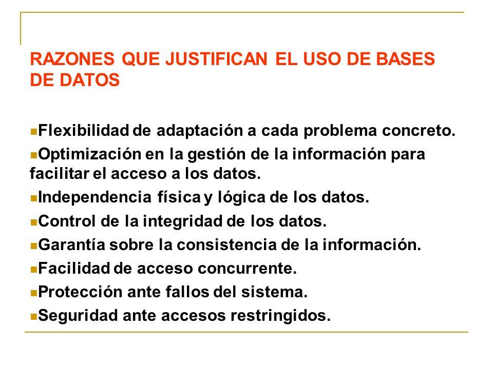 RAZONES QUE JUSTIFICAN EL USO DE BASES DE DATOS