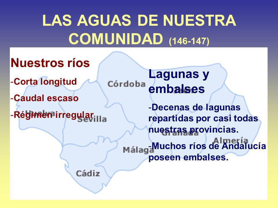 LAS AGUAS DE NUESTRA COMUNIDAD (146-147)