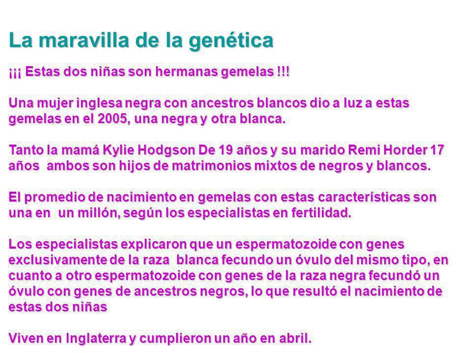 La maravilla de la genética