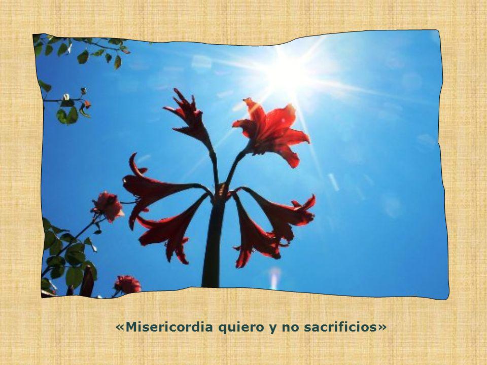 «Misericordia quiero y no sacrificios»