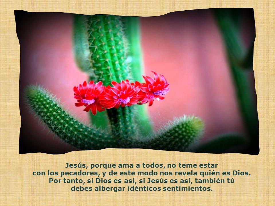 Jesús, porque ama a todos, no teme estar con los pecadores, y de este modo nos revela quién es Dios.