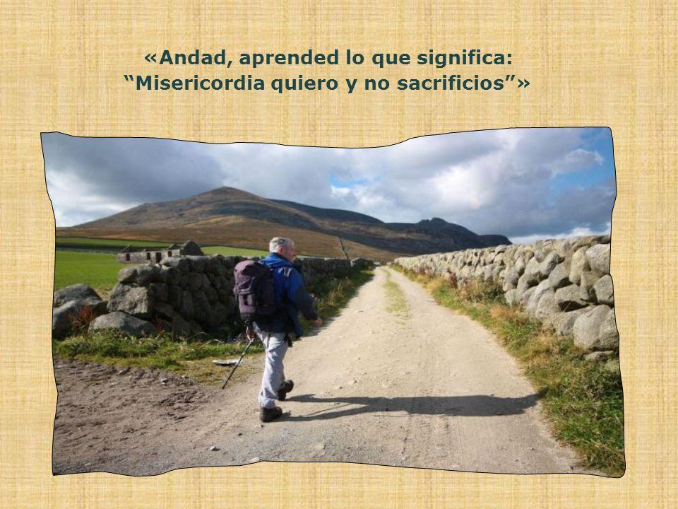 «Andad, aprended lo que significa: Misericordia quiero y no sacrificios »