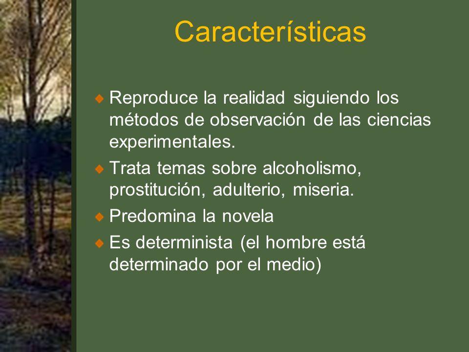Características Reproduce la realidad siguiendo los métodos de observación de las ciencias experimentales.