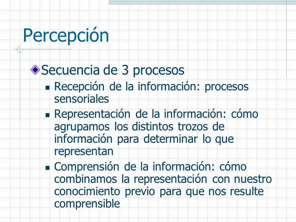 Percepción Secuencia de 3 procesos