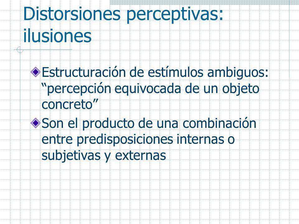 Distorsiones perceptivas: ilusiones