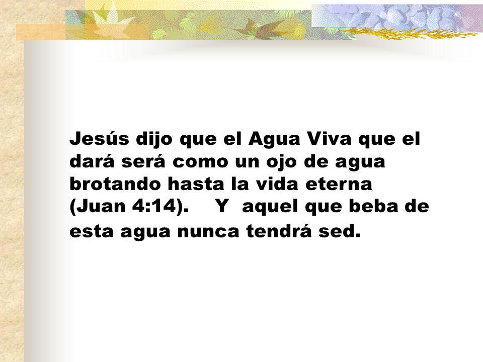 Jesús dijo que el Agua Viva que el dará será como un ojo de agua brotando hasta la vida eterna (Juan 4:14).