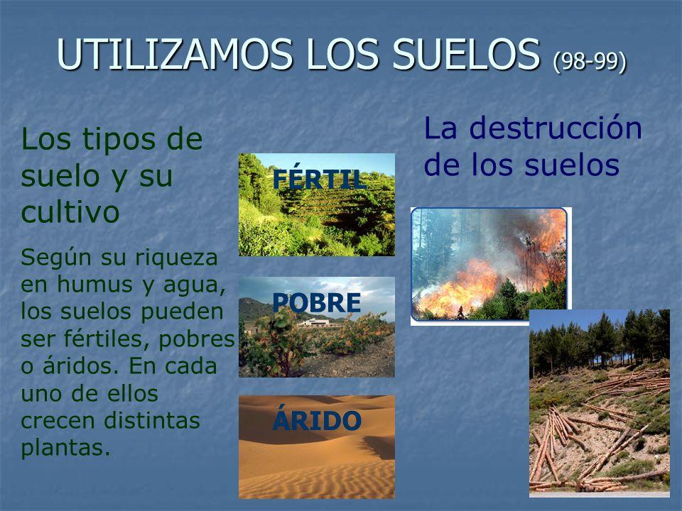 UTILIZAMOS LOS SUELOS (98-99)