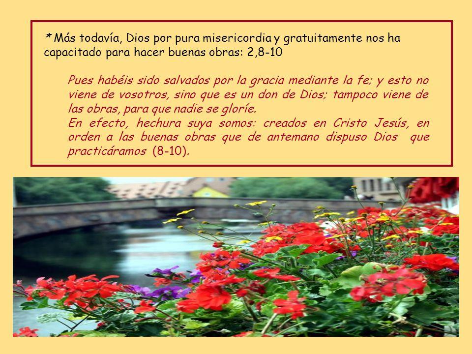 * Más todavía, Dios por pura misericordia y gratuitamente nos ha capacitado para hacer buenas obras: 2,8-10