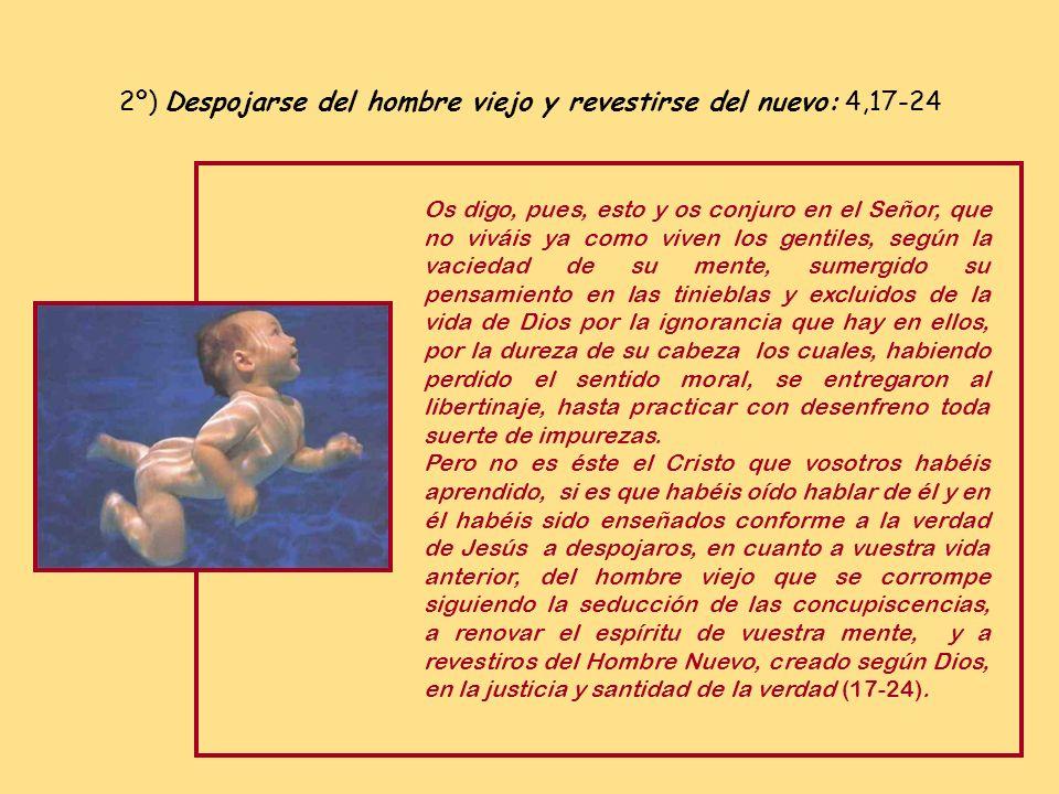 2º) Despojarse del hombre viejo y revestirse del nuevo: 4,17-24
