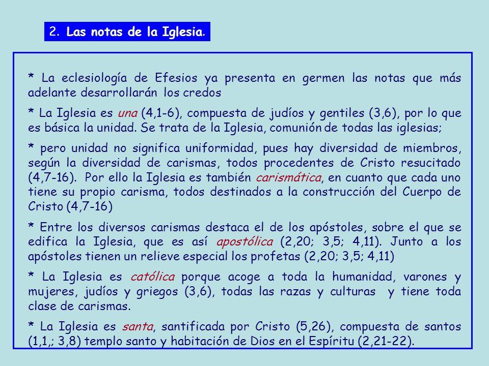 2. Las notas de la Iglesia. * La eclesiología de Efesios ya presenta en germen las notas que más adelante desarrollarán los credos.