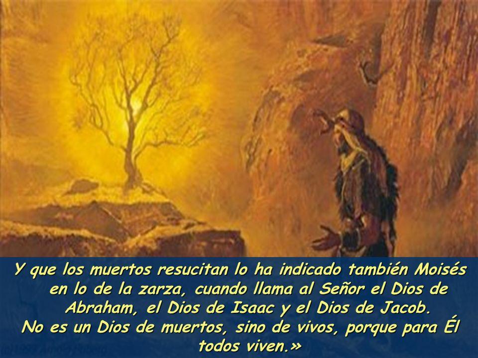 No es un Dios de muertos, sino de vivos, porque para Él todos viven.»