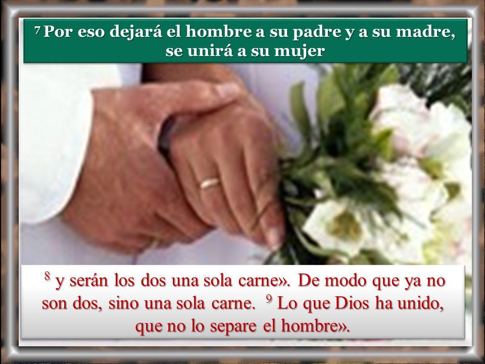 7 Por eso dejará el hombre a su padre y a su madre, se unirá a su mujer