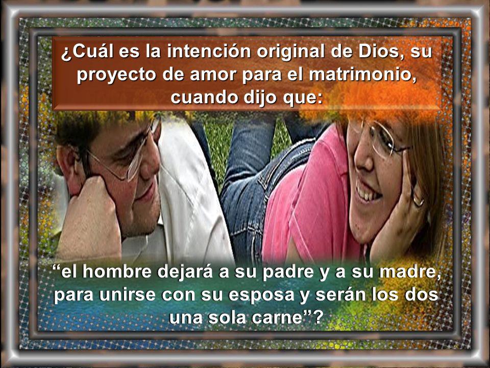 ¿Cuál es la intención original de Dios, su proyecto de amor para el matrimonio, cuando dijo que: