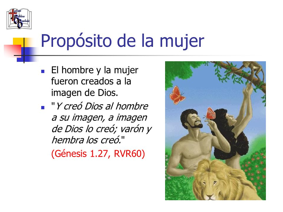 Propósito de la mujer El hombre y la mujer fueron creados a la imagen de Dios.