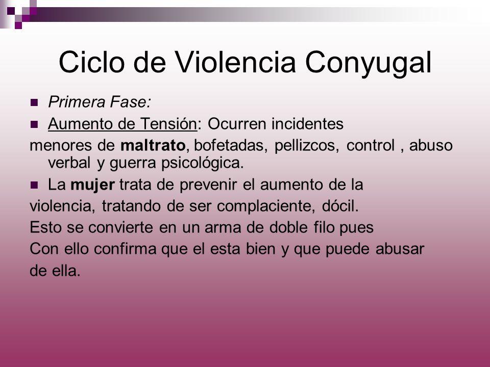 Ciclo de Violencia Conyugal