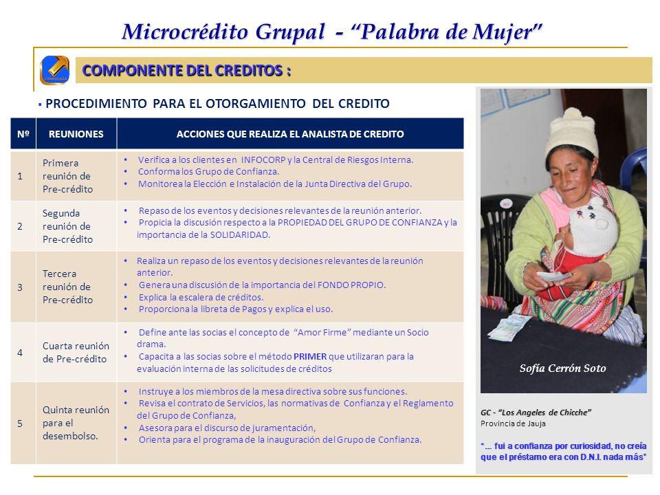 COMPONENTE DEL CREDITOS :