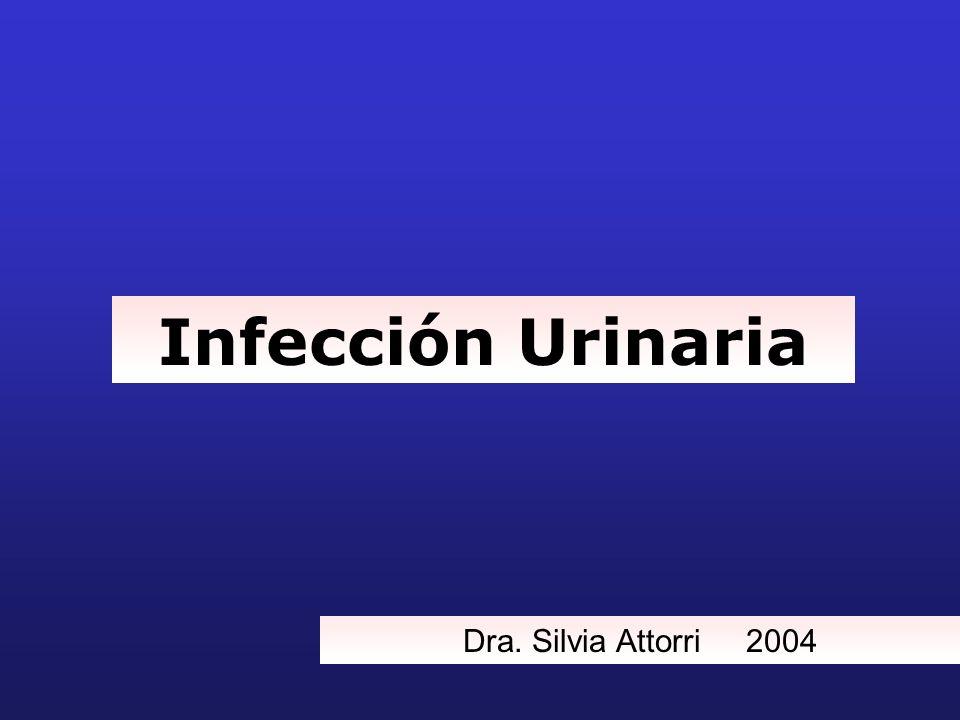 Infección Urinaria Dra. Silvia Attorri 2004