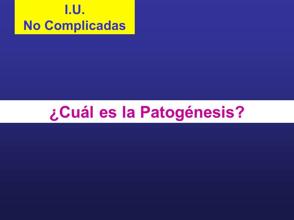 ¿Cuál es la Patogénesis