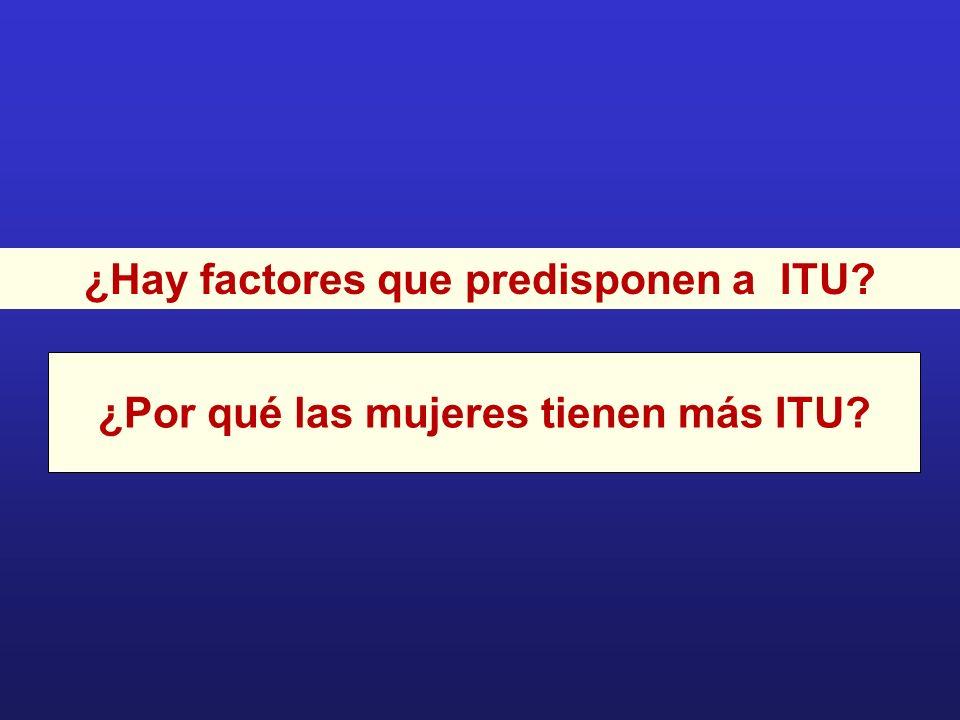 ¿Hay factores que predisponen a ITU
