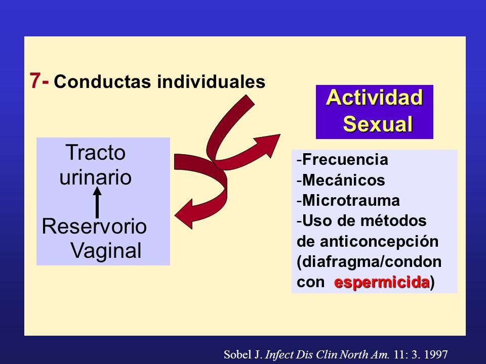 7- Conductas individuales