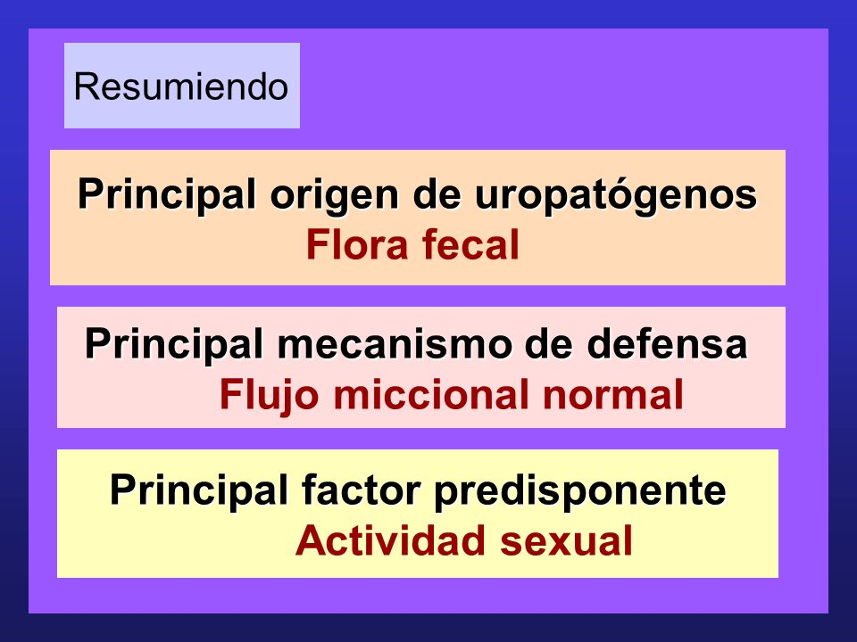 Principal factor predisponente Actividad sexual