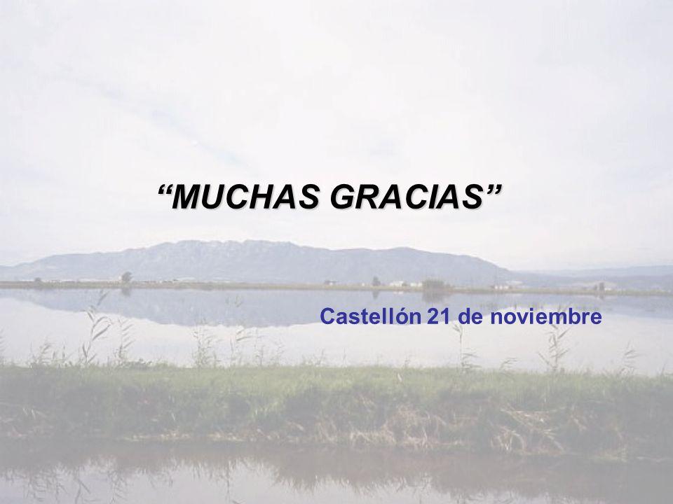 Castellón 21 de noviembre