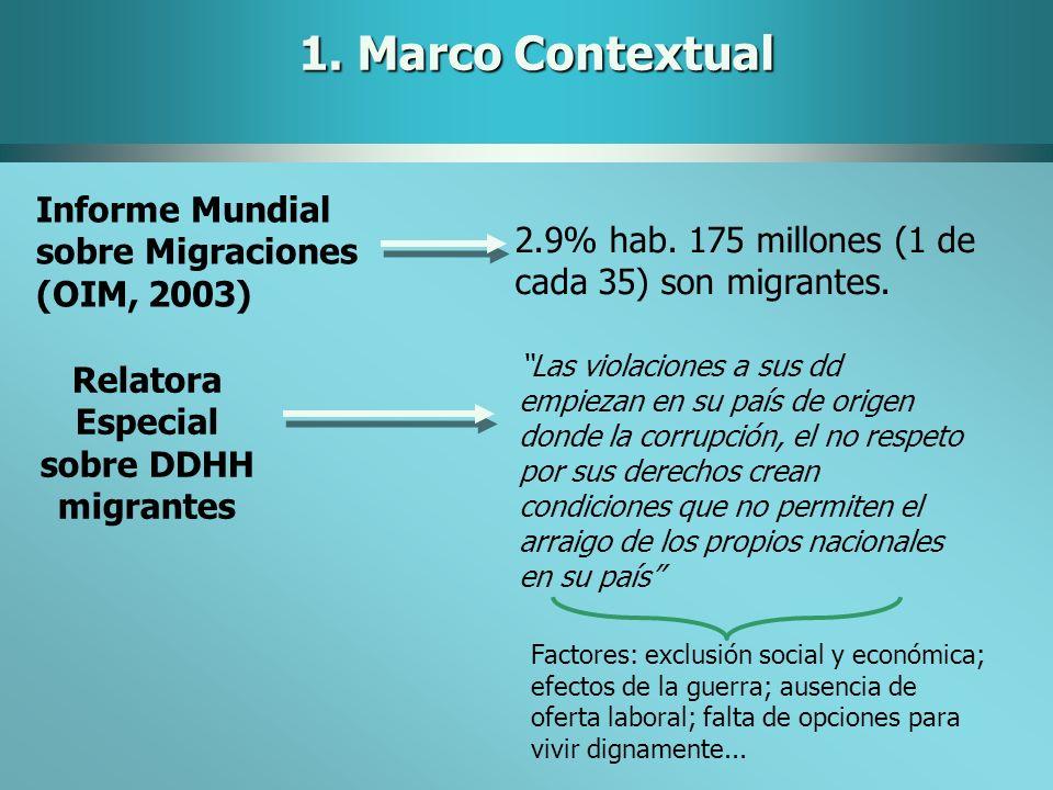 Relatora Especial sobre DDHH migrantes