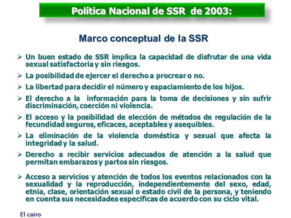 Política Nacional de SSR de 2003: Marco conceptual de la SSR