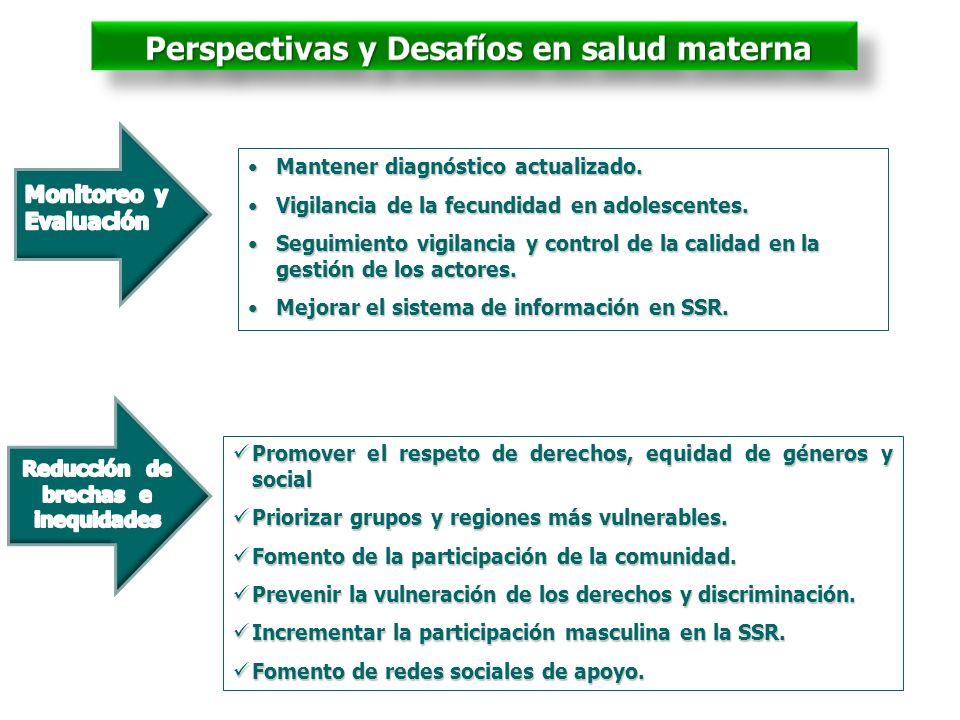 Perspectivas y Desafíos en salud materna