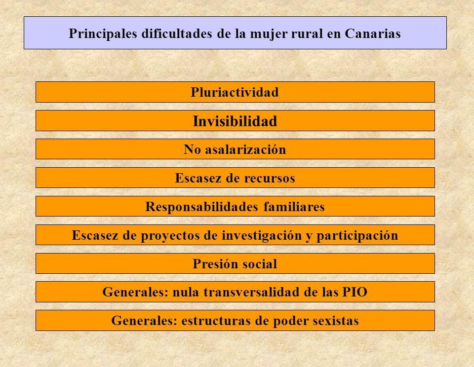 Invisibilidad Principales dificultades de la mujer rural en Canarias