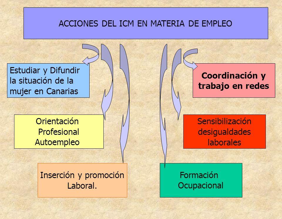 ACCIONES DEL ICM EN MATERIA DE EMPLEO