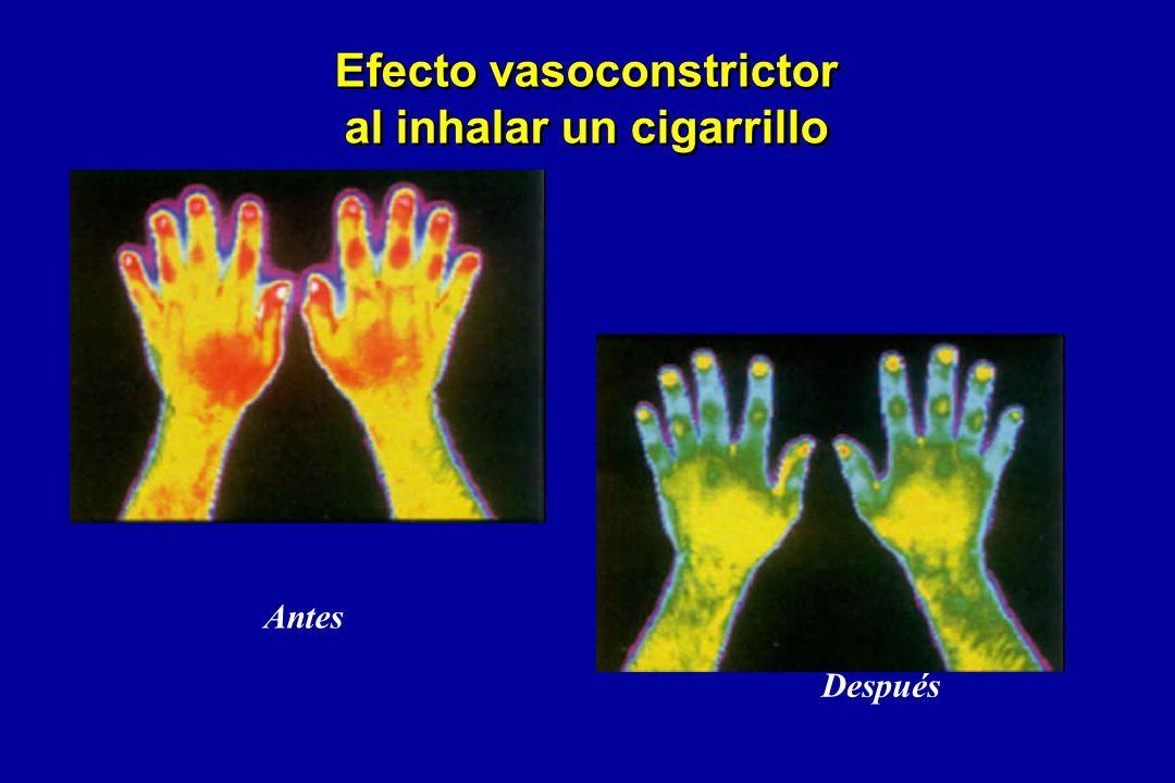 Efecto vasoconstrictor al inhalar un cigarrillo