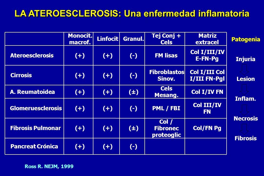 LA ATEROESCLEROSIS: Una enfermedad inflamatoria
