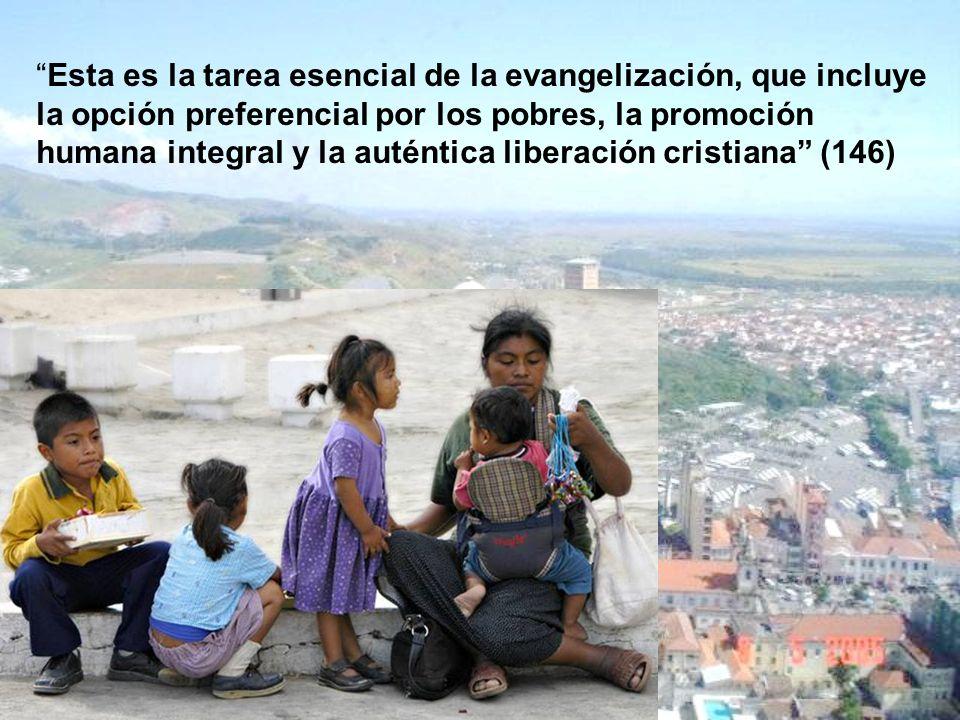 Esta es la tarea esencial de la evangelización, que incluye la opción preferencial por los pobres, la promoción humana integral y la auténtica liberación cristiana (146)