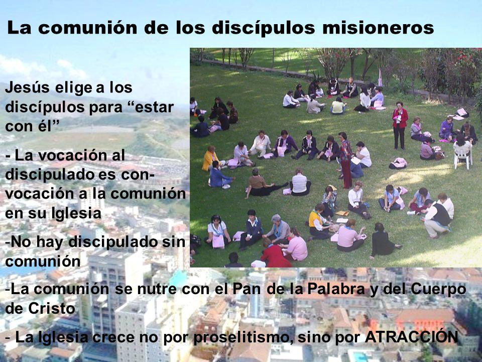 La comunión de los discípulos misioneros
