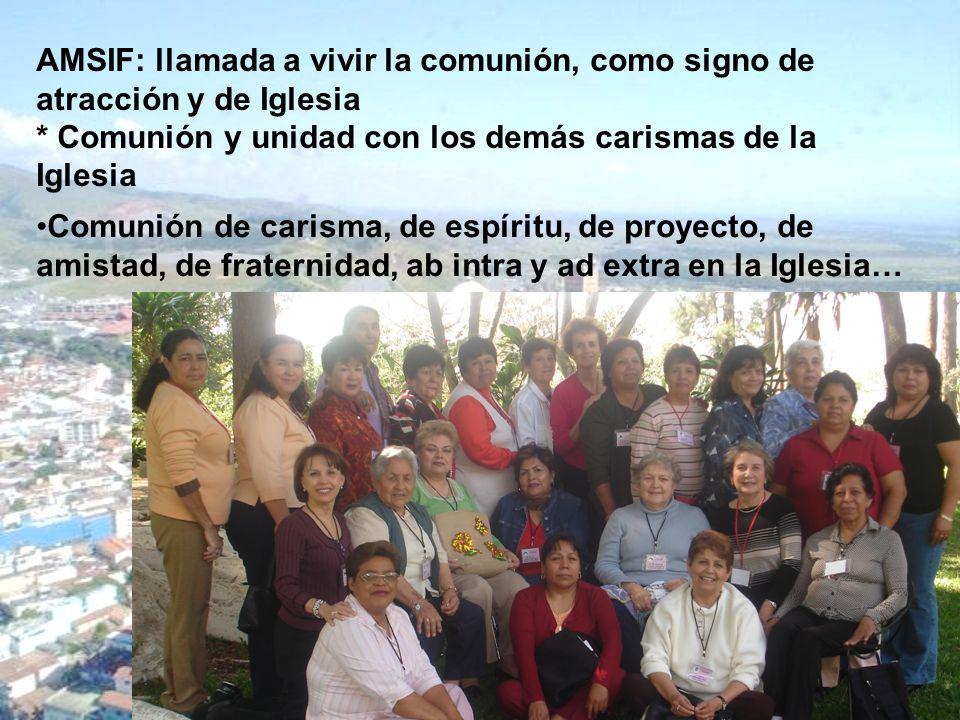 AMSIF: llamada a vivir la comunión, como signo de atracción y de Iglesia