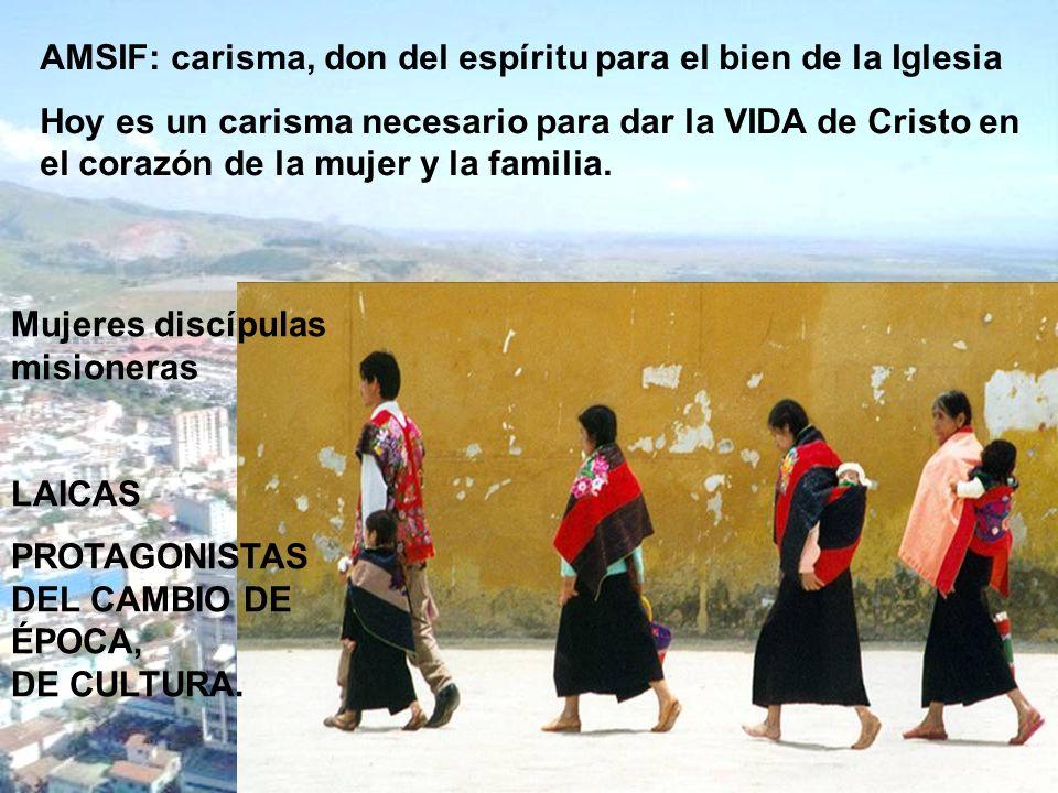 AMSIF: carisma, don del espíritu para el bien de la Iglesia