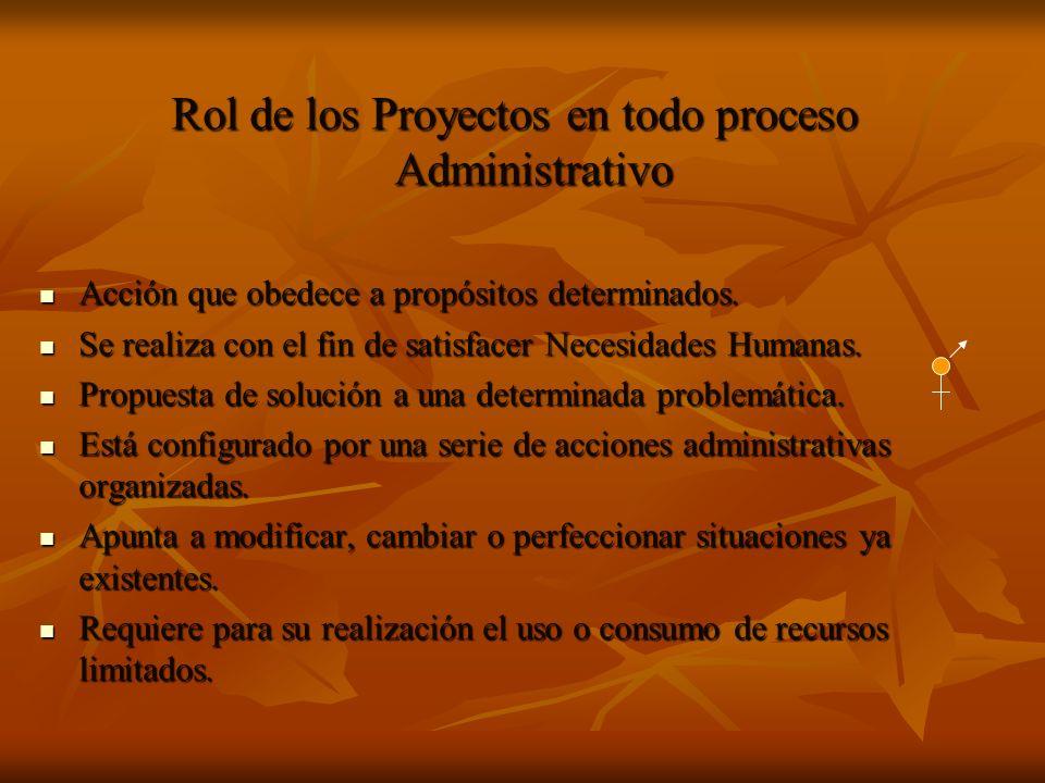 Rol de los Proyectos en todo proceso Administrativo