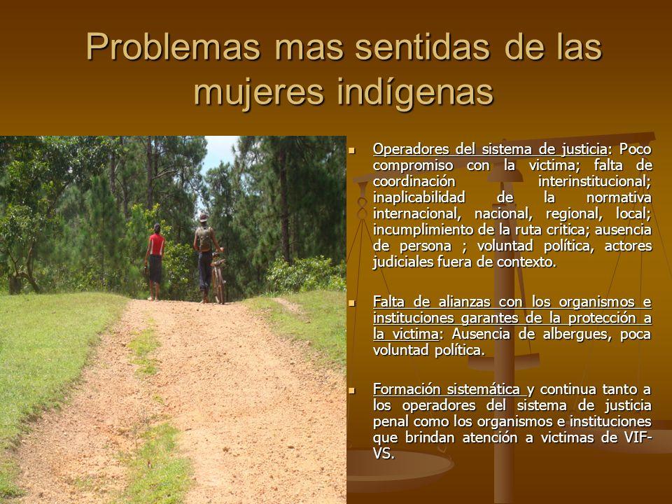 Problemas mas sentidas de las mujeres indígenas