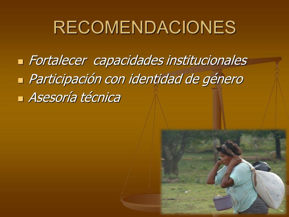RECOMENDACIONES Fortalecer capacidades institucionales
