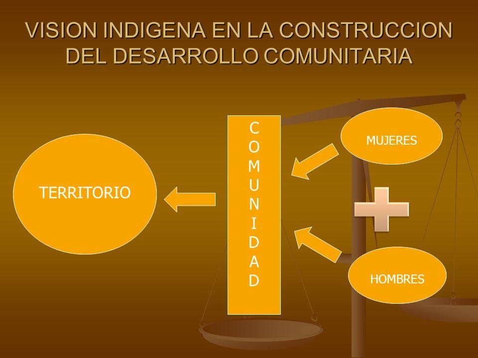 VISION INDIGENA EN LA CONSTRUCCION DEL DESARROLLO COMUNITARIA