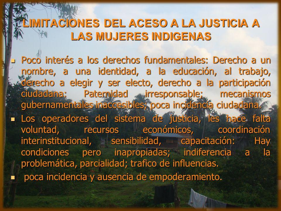 LIMITACIONES DEL ACESO A LA JUSTICIA A LAS MUJERES INDIGENAS