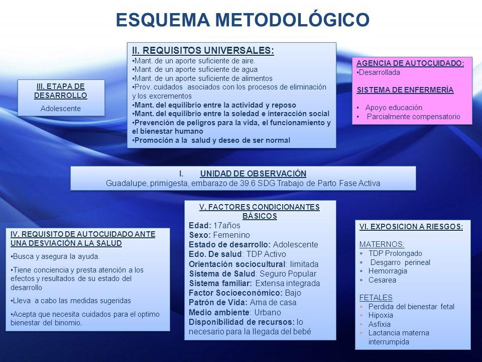 V. FACTORES CONDICIONANTES BÁSICOS