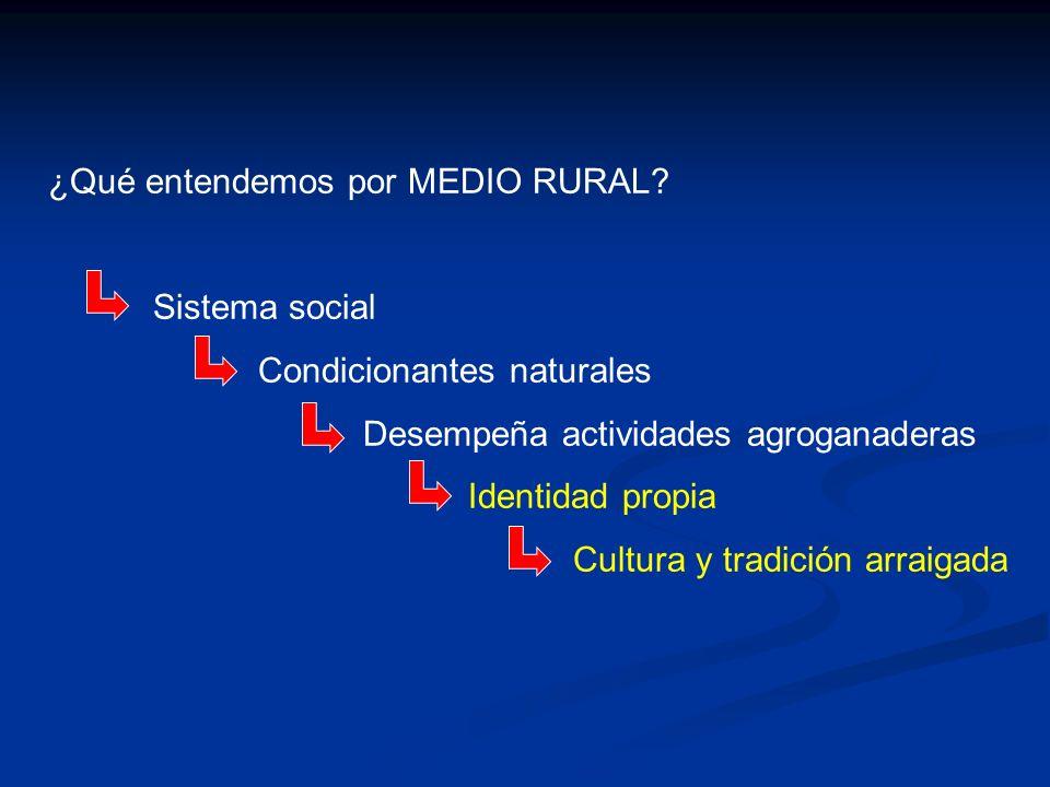 ¿Qué entendemos por MEDIO RURAL
