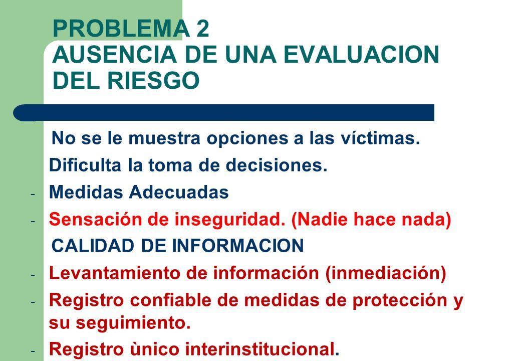 PROBLEMA 2 AUSENCIA DE UNA EVALUACION DEL RIESGO