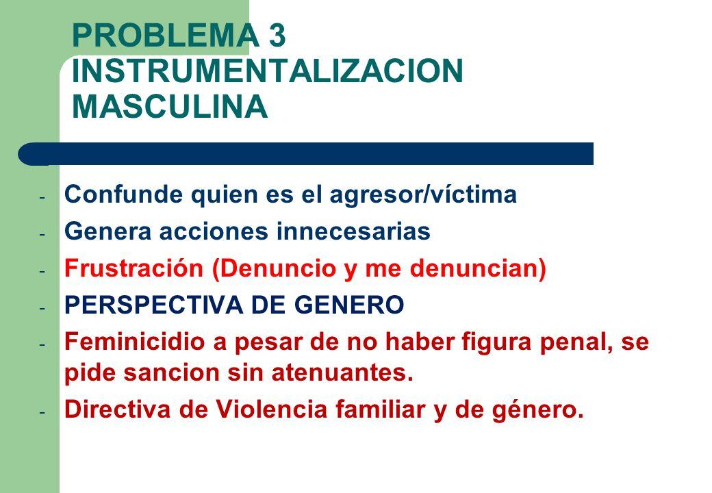 PROBLEMA 3 INSTRUMENTALIZACION MASCULINA